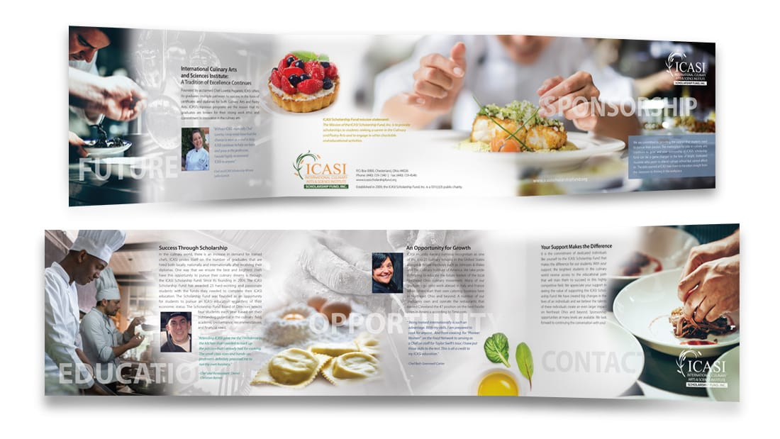 ICASI-Fundraising Into Brochure 2